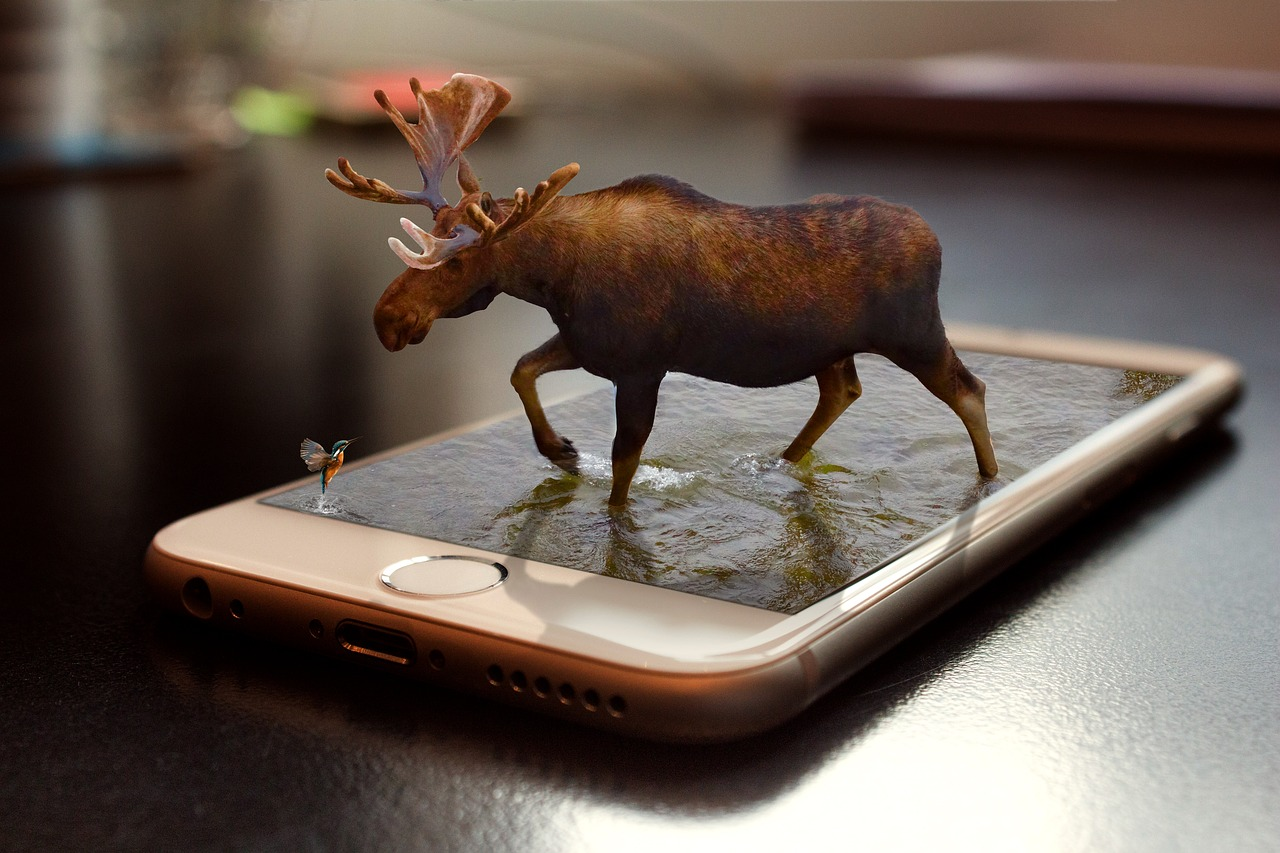 Moose and Hummingbird Hologram on an iPhone